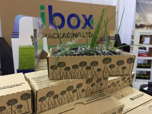 ibox Packaging, boxes, displays, retail packaging