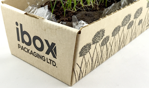 logo on shipping box