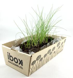packaging, cardboard box, planter