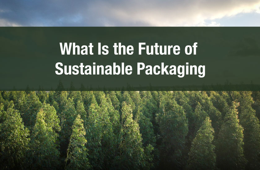 What Is the Future of Sustainable Packaging