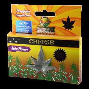 Premium Cannabis Seeds Retail Box